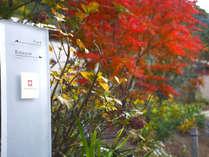 絵画のような美しい秋のエントランス