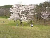 【周辺観光】山村広場(御所の台)春はお花見親子でのびのび遊べます!!