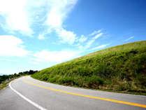 緑香る大自然の大山へようこそ♪