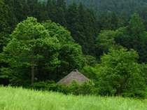 新緑の映画「阿弥陀堂だより」のロケ地周辺の風景