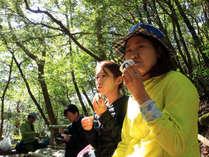 【昼食タイム】神秘の森での昼食タイムは、心も身体も自然からのパワーをもらえます!