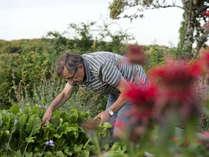 [夕朝食付]6/1~6/3限定◆ミシェル・ブラス来日記念◆SpecialGalaDinner:北海道・洞爺の野菜づくしコース
