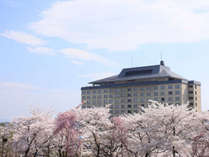【春の外観】花巻温泉の園内は桜並木があり、満開時は絶景です!!