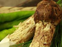 ☆グレードアップ松茸!☆■旬の味覚■地元で採れた100%国産松茸で大満足プラン♪【焼松茸付】1泊2食