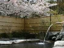 【お見合い露天風呂】春は花見をしながら♪
