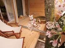 【露天風呂付き客室】自分専用の露天風呂でお花見