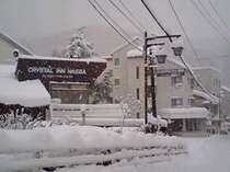 11月雪の外観