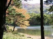 蔵王の大自然が、日ごろの疲れを癒してくれます。
