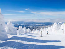 樹氷の合間を爽快に滑る!スキーリフト券付きのプランでお得に蔵王スキー場を満喫♪