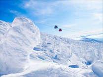 """【当館目の前!】""""蔵王ロープウェイ"""" 綿を纏ったかのように『もこもこ』した樹氷を空から一望。"""