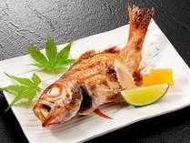 高級魚「のどぐろ」