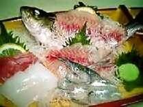 【ちっちゃな舟盛付き♪】お魚づくし会席&源泉かけ流し温泉