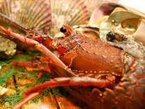 ★伊勢えびプラン★天草の旬を味覚でおもてなし!!天然<伊勢えび>海鮮料理をご堪能ください(^◇^)♪*