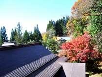 紅葉と旧館と秋晴れ