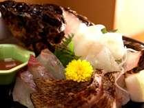 三河湾の地魚♪煮付けや焼き魚でおなじみの魚も新鮮だからお造りで♪
