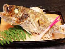 【旬の特選☆蒲郡水揚げ逸品】都会ではほとんど見かけない『シロムツ』 皮目の脂が絶品の地魚