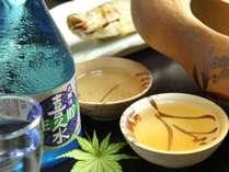 大好評!南信州ふるさと料理&岩魚の骨酒付き プラン【温泉】 《10月~》