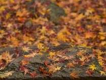 はづ別館~周辺の紅葉~