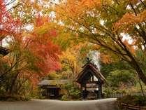 【温泉地獄/紅葉】玄関すぐ横で湯けむりあげる風景にホッとする。