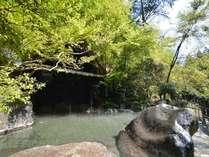 【☆1泊2食付☆24時間温泉・家族風呂・屋内プール無料!!】奥の湯スタンダードプラン☆