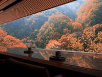 壮大なスケールの絶景ラウンジ※例年紅葉の見頃:10月中旬~11月初旬