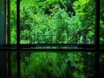 森鴎外・与謝野晶子など、多くの文豪が愛した景色・いで湯