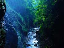 三方を山に囲まれた渓谷の湯宿は、上信越高原国立公園内にあり、どこまでも続く緑に埋もれております。