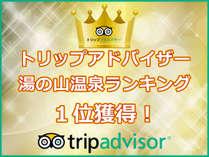 トリップアドバイザー☆湯の山温泉ランキング1位記念!