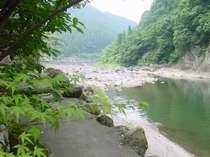 渓流釣りも川遊びも満喫できますよ~。大物が掛かるかも。
