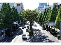 当ホテルから駅への道、市役所通りです。整然とした並木が魅力的です