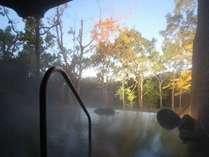 『櫟の森の露天風呂』湯上がりすべすべのナトリウム・マグネシウム炭酸水素塩・硫黄塩泉