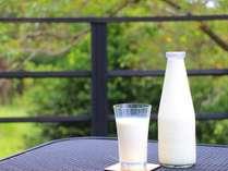 ゴールデンミルクと称されるガンジー牛乳