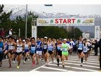 トキマラソン:佐渡を横断し、空を舞う