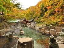 『摩訶の湯』秋・混浴・100畳/紅葉の時期にはまっ赤に染まり見る人を驚かせます。