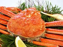 食べ応え満点!ずわい蟹まるごと一杯
