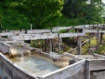 「しんとろの湯」<トロトロの温泉です>