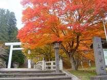 【11月中旬】猪苗代町 土津神社