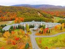 鮮やかに染まる秋のホテル外観