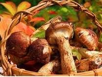 秋の味覚「松茸」。料理長が腕によりをかけ、おいしい懐石に仕立てます。