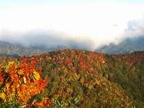 山田牧場の紅葉