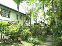w箱根の山wは沢山の大きな木に囲まれています。