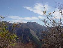 観音峰より稲村ケ岳を望む