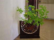 生花と花器と光のアンサンブル
