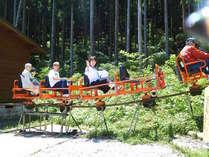五代松鍾乳洞トトロの森のトロッコ