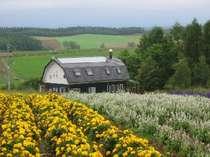 四季彩の丘からのペンション麦