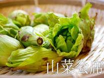 【山菜会席】『ワラビ』『フキノトウ』『タラの芽』『フキ』『うど』など…自然の恵みがいっぱい♪