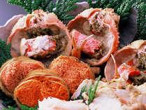メスのずわい蟹「香箱蟹」。短い漁期ながらも、その味わいに多くの人が虜になる食材です。