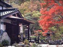 【外観】紅葉シーズンは全てのお部屋から色づいた山あいの風景をお楽しみいただけます。