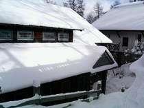1泊2食付洋室☆スキー☆スノボ☆グループ・ファミリー