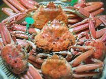 【ブランド蟹】美味しいブランド蟹たちが貴方を待っております…★